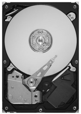 Buy Seagate Barracuda 2 TB Desktop Internal Hard Drive (ST2000DL003): Internal Hard Drive