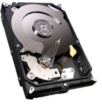 Buy Seagate Barracuda 3 TB Desktop Internal Hard Drive (ST3000DM001): Internal Hard Drive