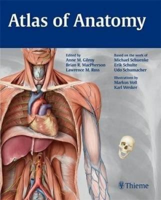 Atlas thieme anatomy and head neuroanatomy of pdf