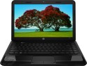 HP 1000-1205TU Laptop (2nd Gen Ci3/ 2GB/ 500GB/ Win8) - Glossy Imprint Black Licorice