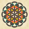 Sacred Geometry- The Flower Of Life 8 Fine Art Print - Extra Large