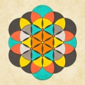 Sacred Geometry- The Flower Of Life 2 Canvas - Extra Large