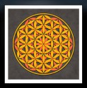 Sacred Geometry- The Flower Of Life 10 Fine Art Print - Extra Large