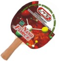 GKI Nano Force Table Tennis Racquet