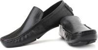 San Frissco Slip On: Shoe
