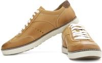 Timberland Ekhudston Ox Sneakers: Shoe