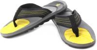 Compare Fila Ibro Flip Flops: Slipper Flip Flop at Compare Hatke