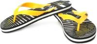 Fila Flip Flops: Slipper Flip Flop