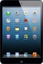 Apple 16GB iPad Mini with Wi-Fi: Tablet
