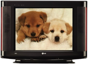 Buy LG 14SA2BB CRT 14 inches Television: Television